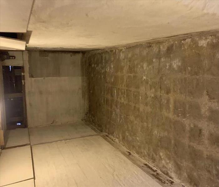 photo of basement that was restored after a sewage flood.