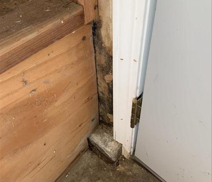 water heater stand possessing mold
