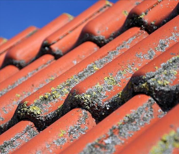 Clay tile roofing that is damaged